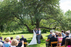 Weddings guests in front of bride and groom in front of apple tree