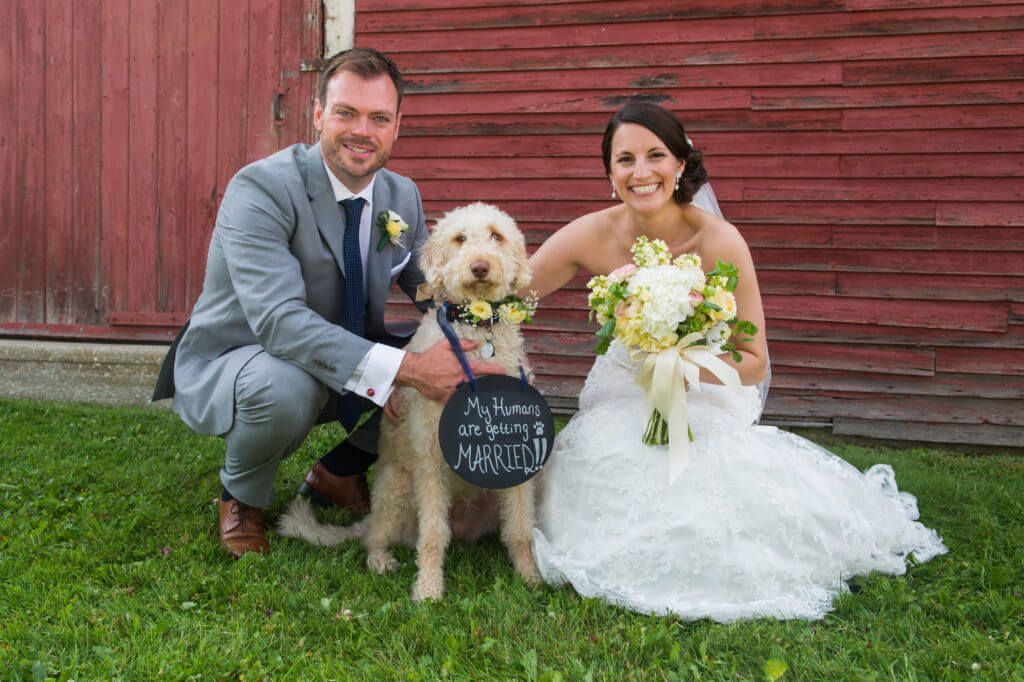 Bride and Groom near Red Clover barn with dog and flowers
