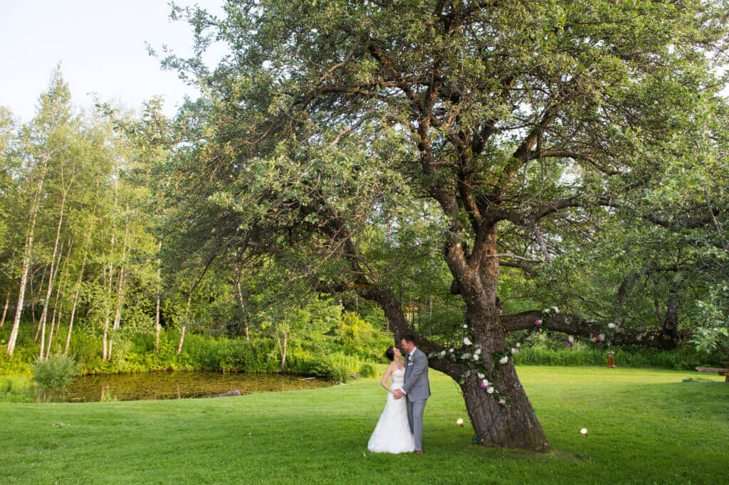 Bride and Groom by Red Clover's apple tree