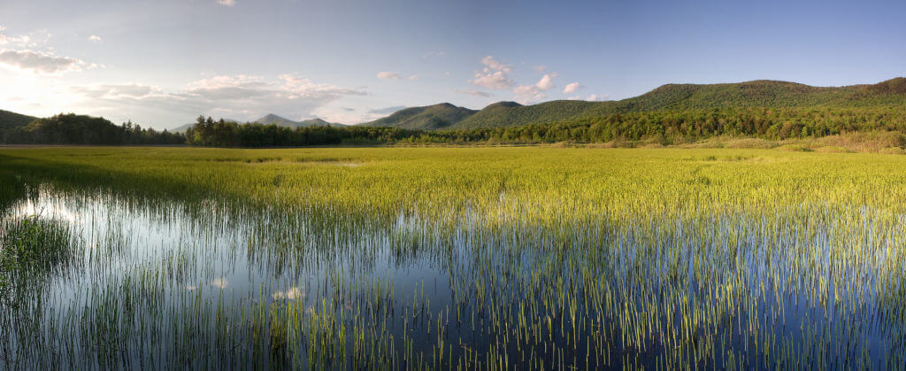 Grassy pond with mountains and blue skies in the background